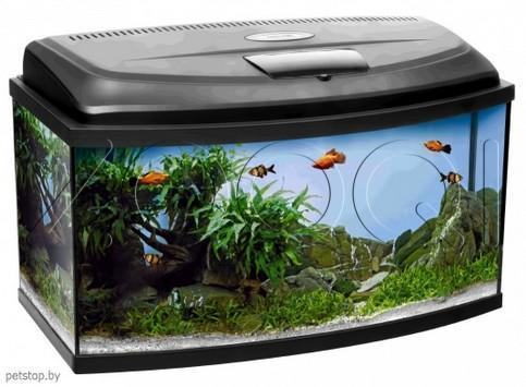 Аквариум AQUARIUM PAO60 CLASSIC with equipment