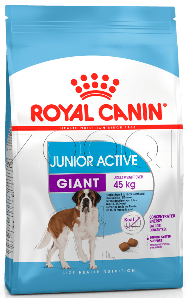 Royal Canin Giant Junior Active - 15 кг